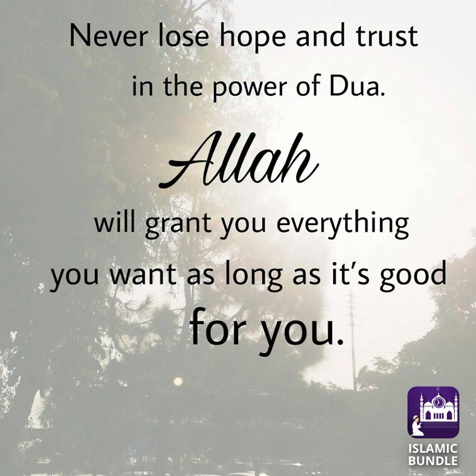 Daily Inspiration - inspiration 31 - NEVER LOSE HOPE AND TRUST